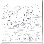 Dyr - Polar bear