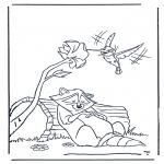 Dyr - Raccoon and kolibri