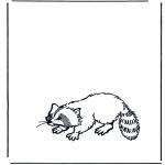 Dyr - Raccoon