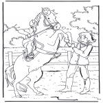 Dyr - Rearing horse