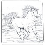 Dyr - Running horse