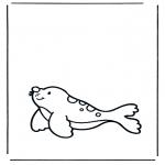 Dyr - Seal 1