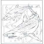 Dyr - Shark