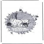 Dyr - Sheep