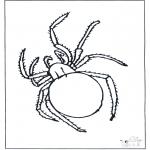 Dyr - Spider