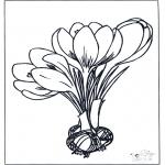 Litt av hvert - Spring flowers 1