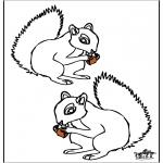 Dyr - Squirrel 4