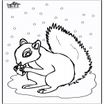 Dyr - Squirrel 5