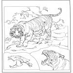 Dyr - Tiger 3