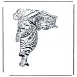 Dyr - Tiger